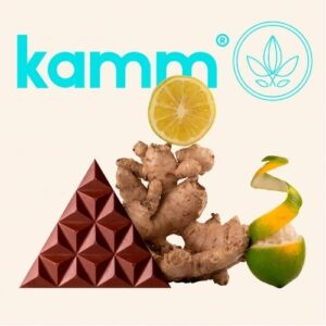 Kamm Ginger Lemonade